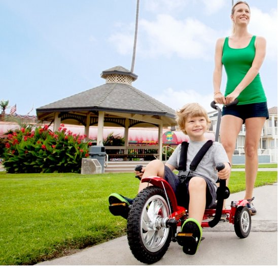 mobo Mega Mini The Roll to Ride Three Wheeled Cruiser