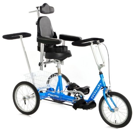 Micah Compact Special Needs Modular Tricycle With Rear Assist handle