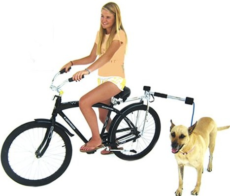 Bike Balance Bicycle Dog Leash Kit