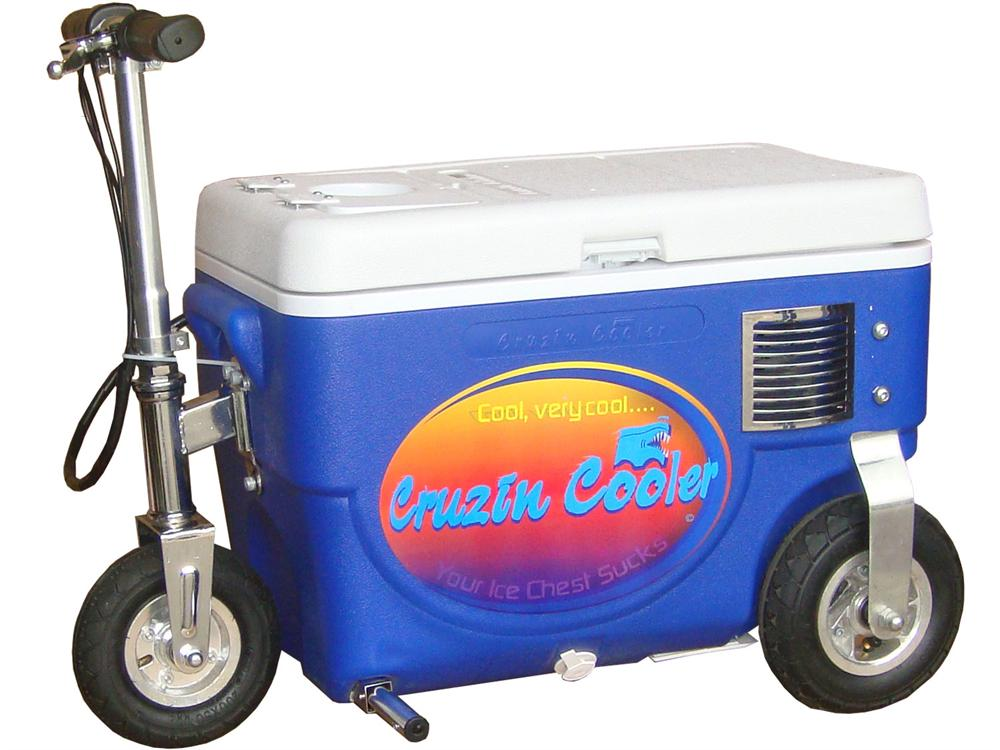 Electric Scooter With Seat >> Cruzin Cooler Scooter 300w - Blue