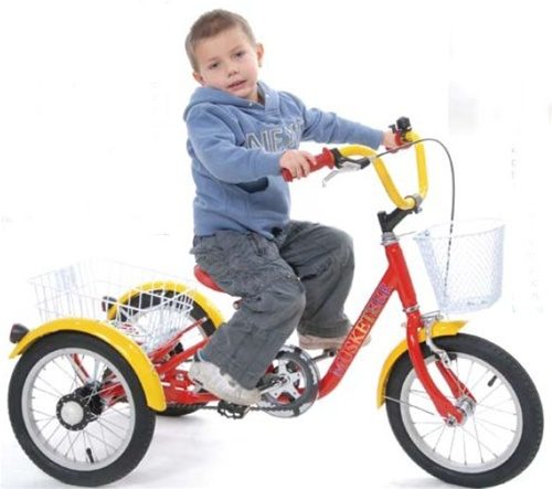 "Mission Musketeer 14"" Adjustable Children's Tricycle"