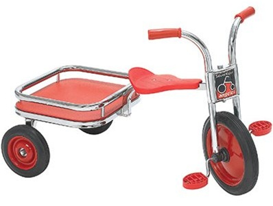 Silver Rider Carry All Trike