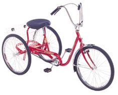 Trailmate DeSoto 20 Classic Adult Tricycle