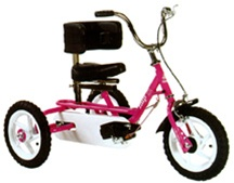 Triaid IMP Special Needs Tricycle